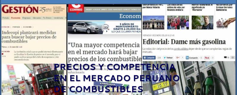 fc1ae4b532a5 Precio y competencia en el mercado peruano de combustibles - Educación en  Ingeniería Química